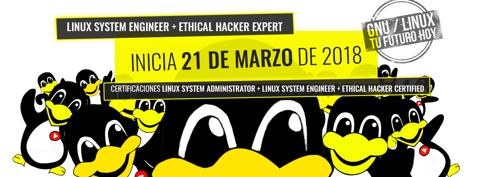 Linux system engineer + ethical hacker expert